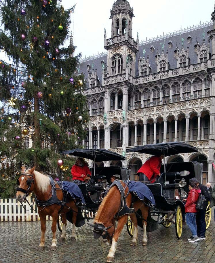 chevaux-grand-place-noel-bruxelles