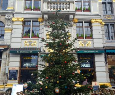 Sapin Grand-Place de Bruxelles à Noel